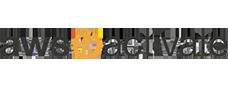 Active Amazon server logo