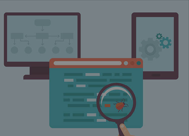 Web Development Process Q & A