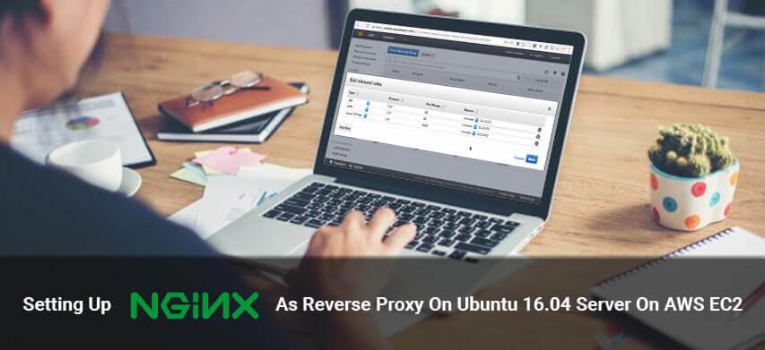 Setting Up Nginx As Reverse Proxy On Ubuntu 16 04 Server On