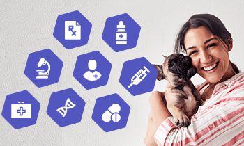 Emerging E-Commerce Market For Pet Drugs Online